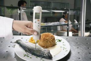 Temperaturmåling med innstikkføler i fisk