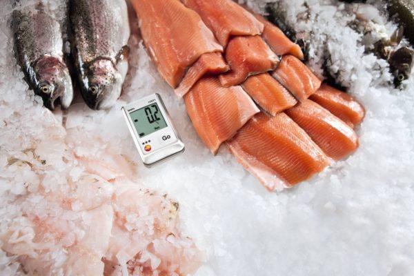 Temperaturovervåking fiskdisk Testo 174T